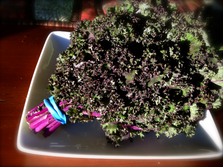 Making Kale Chips