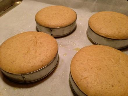Rising Gluten-free English Muffins