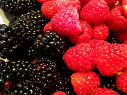 Ripe Blackberries & Raspberries