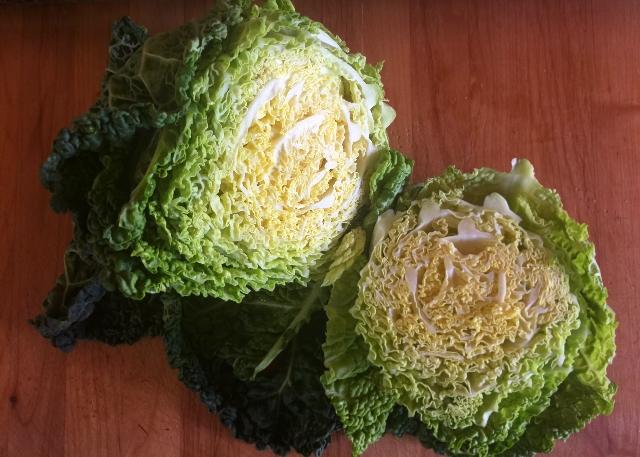 Savoy Cabbage Sliced