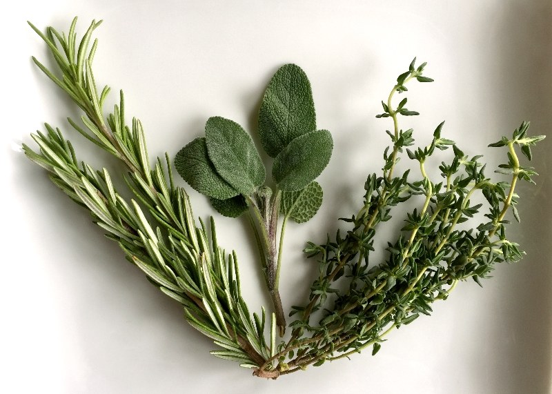 Rosemary, Sage and Thyme