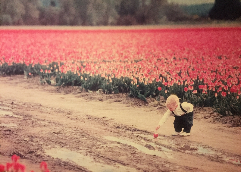 Baby in Tulip Fields