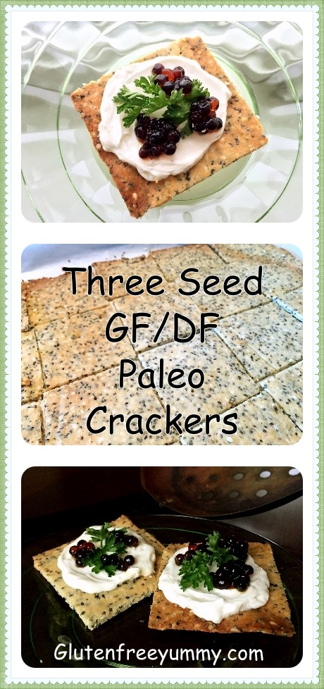Grain-free Crackers Pin