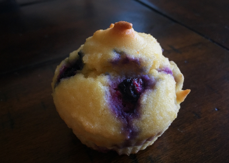 GrainFree Huckleberry Muffin